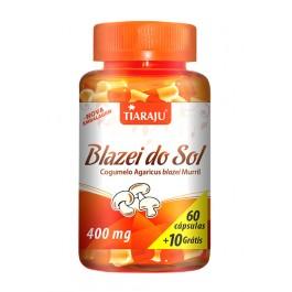 Blazei do Sol - Rico em Proteínas, Vitaminas, Minerais e Fibras + Frete Grátis