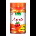 Suplemento de Vitamina C - a Base de Acerola + Frete Grátis